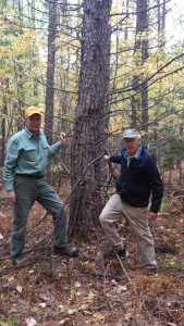 Drs. Bob Weir and Mike Greenwood at in Howland, ME. Plantation age 27. Photo 7 Oct 2014 by Brian Roth