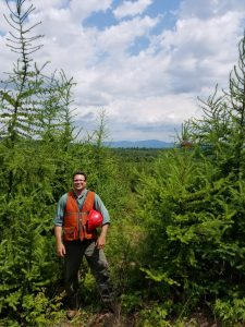 Larch volunteer, next to red pine plantation, Chase Stream 7-7-16 photo with Brian Roth