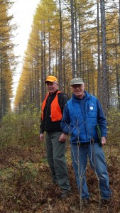 26 year-old open pollinated hybrid larch. Drs. Bob Weir and Mike Greenwood from University of Maine. Photo, October 2014.